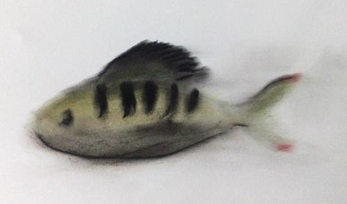 Fischwoche