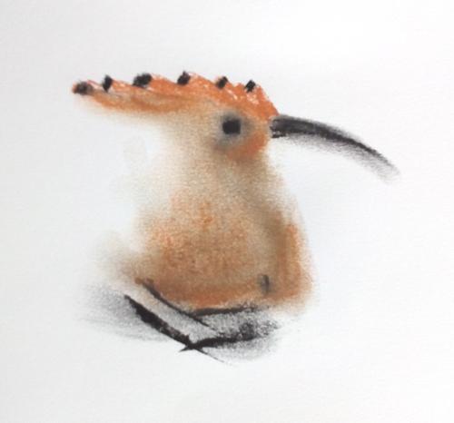 Vogelwoche